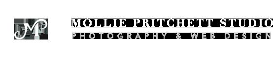 Mollie Pritchett Studio