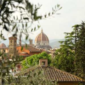 Green in Florence